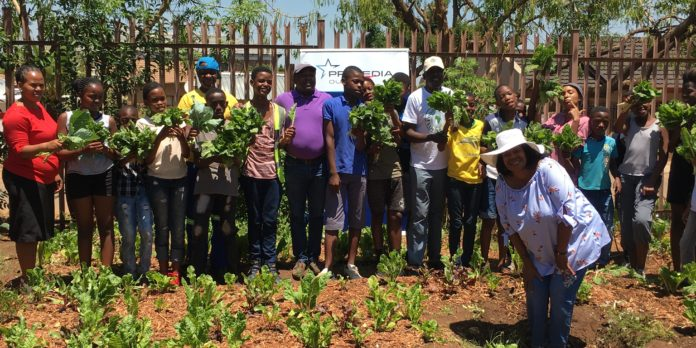 Primedia Outdoor Food Gardens Bear Fruit